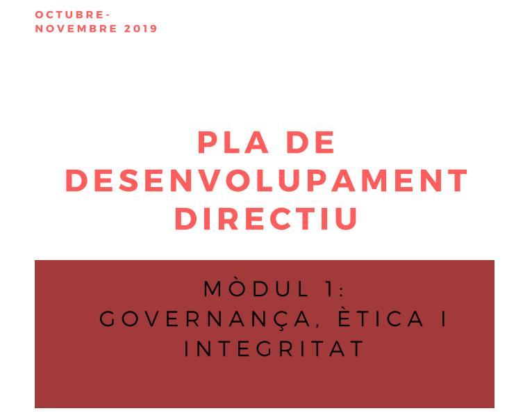 Pla de desenvolupament. Governança, ètica i integritat. 2021
